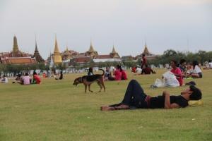 Sanam Luang, tempat orang-orang beristirahat setelah basah-basahan di Khaosan Road